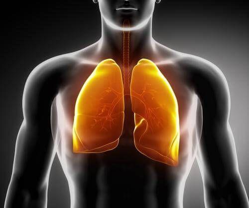 Рак легенів: симптоми, про які ви повинні знати!